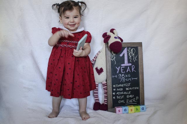 creative way to document baby's first year