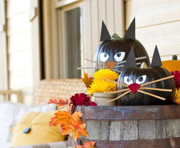 Adorable Black Cat Pumpkins