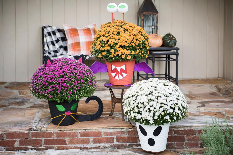 spooky Halloween plants