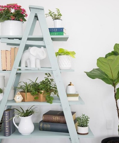 ladder shelf from wooden ladder